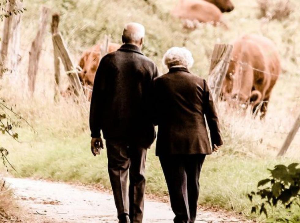 Istat, ampie disuguaglianze di reddito tra i pensionati